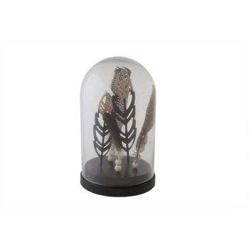 Cosy @ Home Glass Cover W.feathers  D16xh26cm