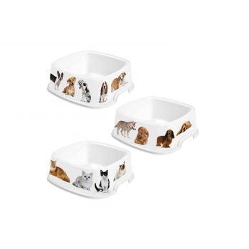 Hega Hogar Pet Mascotas Futtertrog Sortiert