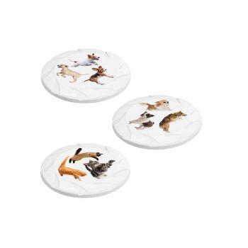 Hega Hogar Pet Mascotas Frisbee Assorted D21.7x