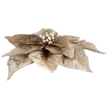 Cosy @ Home Klammer Poinsettia Taupe 18x18xh4cm Kuns