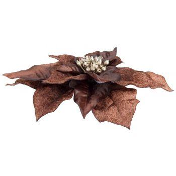 Cosy @ Home Klammer Poinsettia Braun 18x18xh4cm Kuns