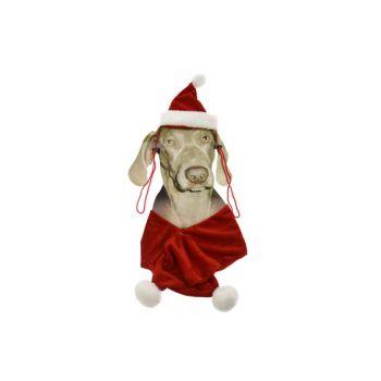 Cosy @ Home Weihnachtskostum Fur Hunde Hut+tuch
